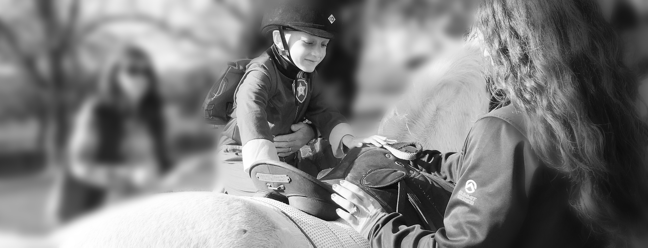 Donate to Loudoun Therapeutic Riding