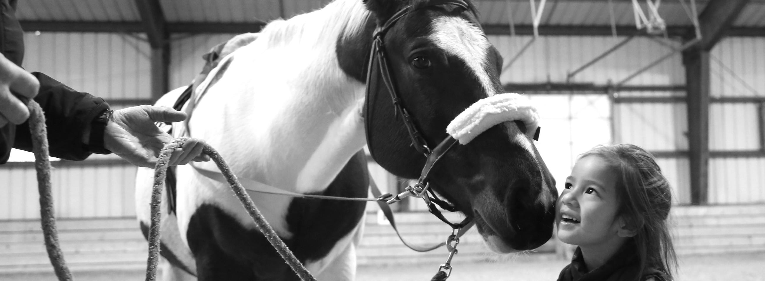 Donate to Loudoun Therapeutic Riding