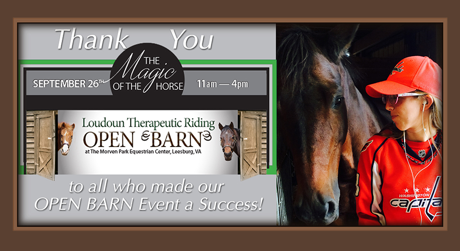blog_open-barn-meet-horses