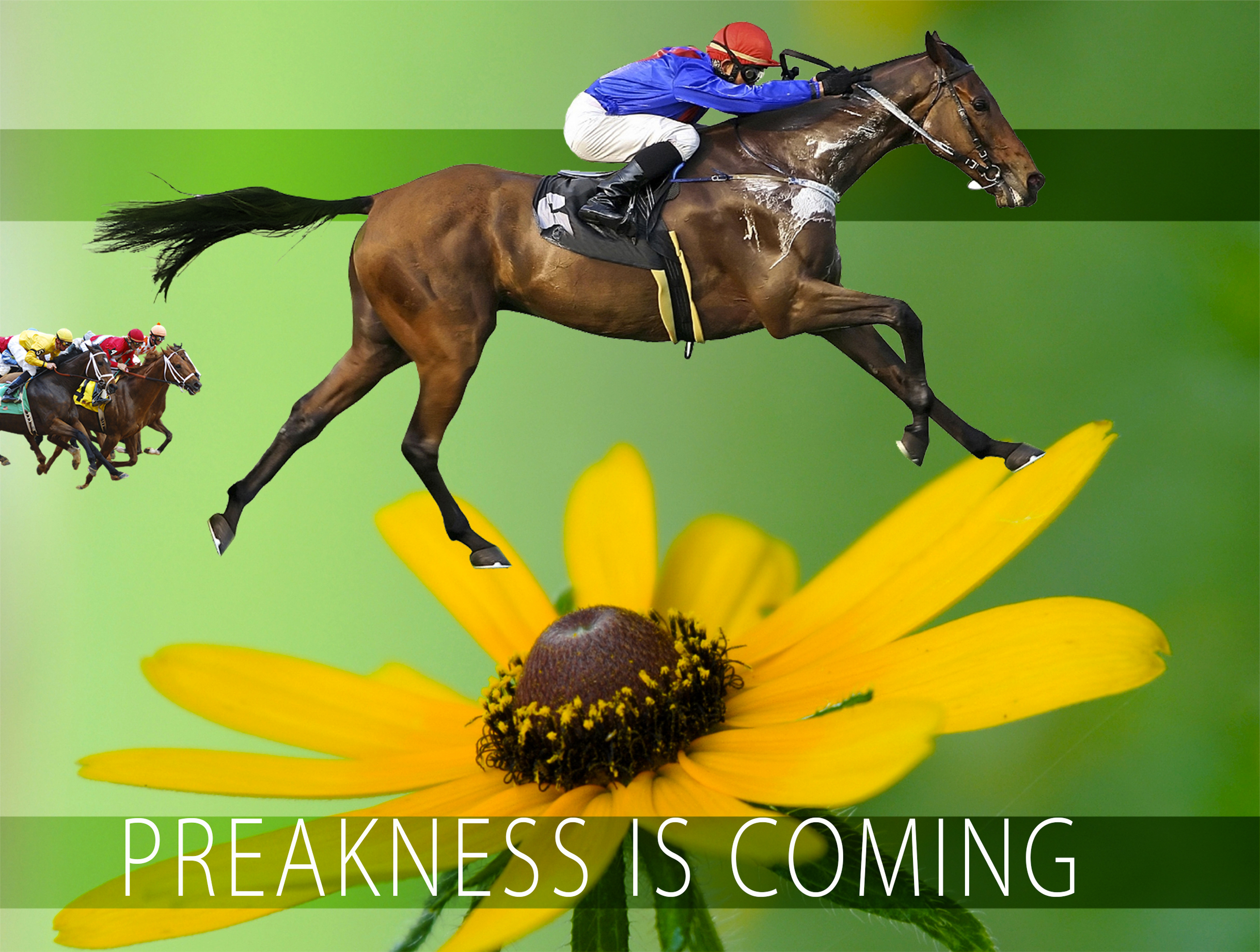 Save the Date 5.21.16 LTR Preakness Party