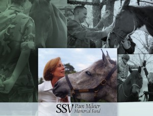 SSV Pam Milner Collage